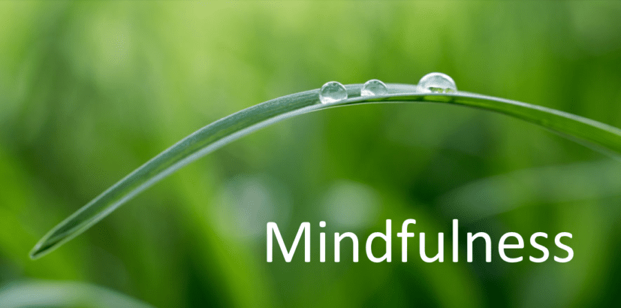 Is Mindfulness the Key to Success?